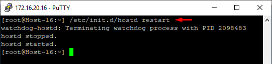 Restart the ESXi host service in Putty